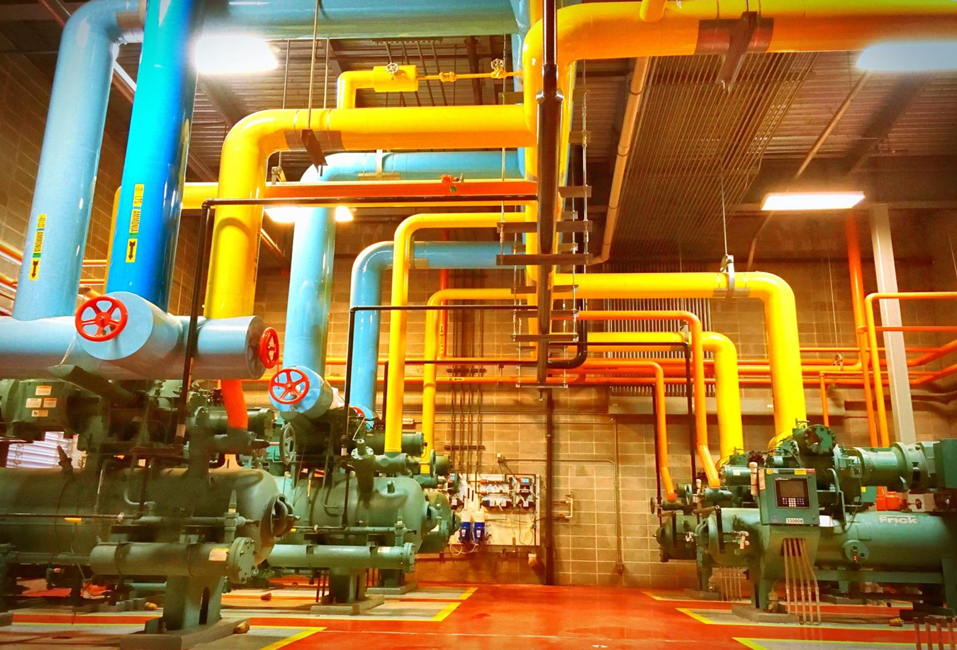 What Color are your Ammonia Pipes?